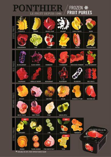 thumbnail of Flyer Fruchtmark EN