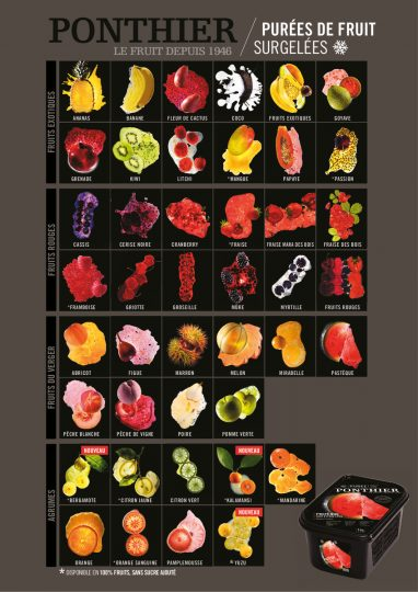 thumbnail of Flyer Fruchtmark FR